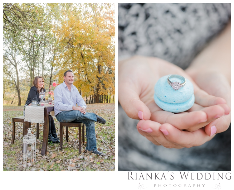 riankas weddings picnic engagement shoot0006