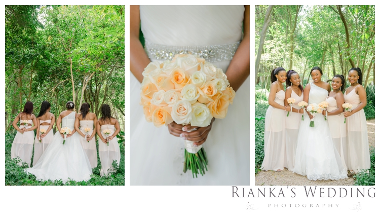 riankas weddings photography solomon busisiwe oakfield farm wedding00043