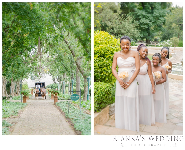 riankas weddings photography solomon busisiwe oakfield farm wedding00052