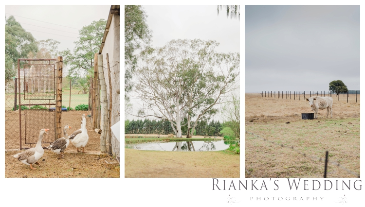 riankas weddings gauteng wedding photographer jenna dayne florence guest farm wedding00006