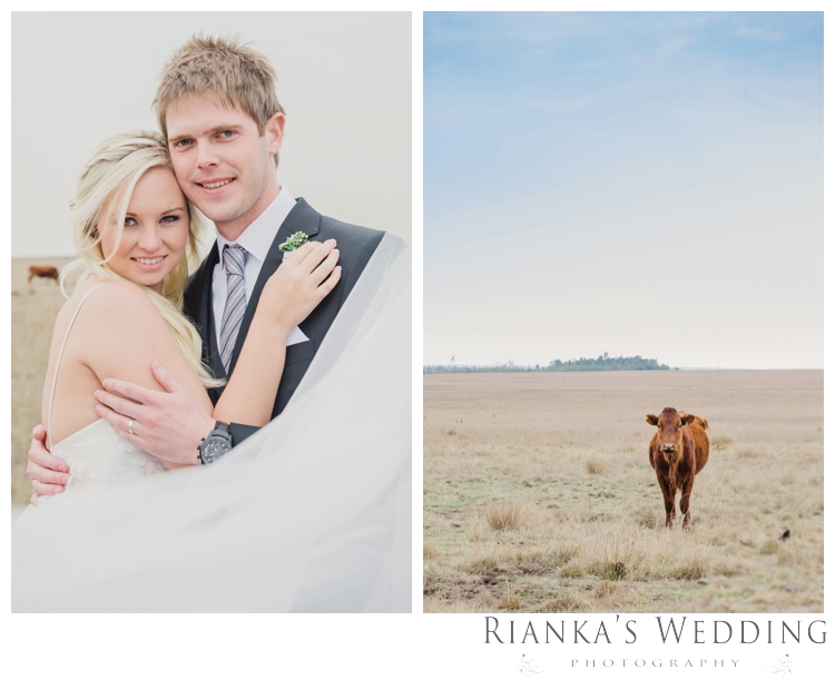 riankas weddings gauteng wedding photographer jenna dayne florence guest farm wedding00057