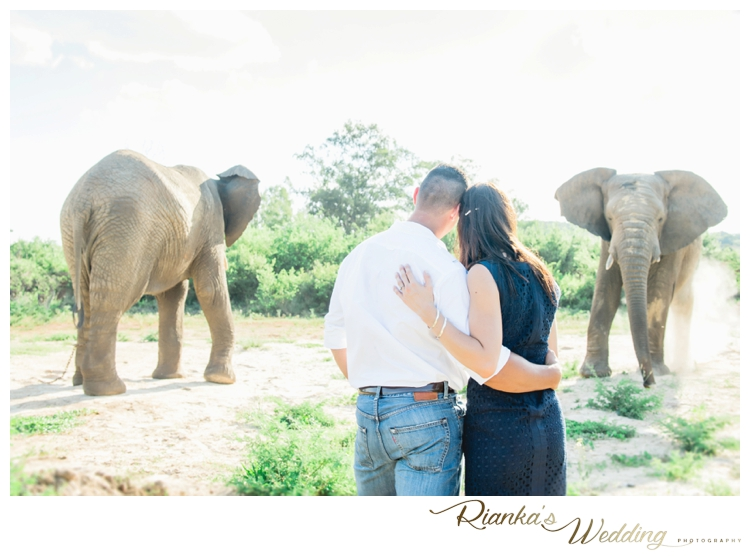 riankas wedding photography elephant engagement shoot michelle morne eshoot00023