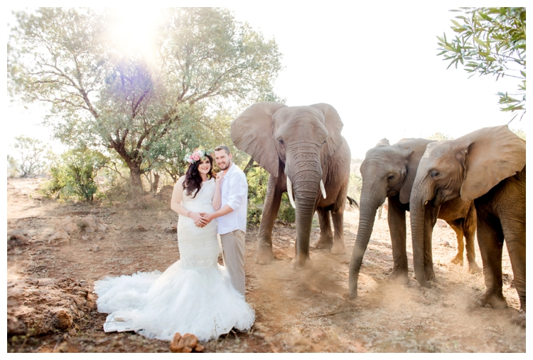 riankas-weddings-elephants-glen-afric-wedding-maternity00001