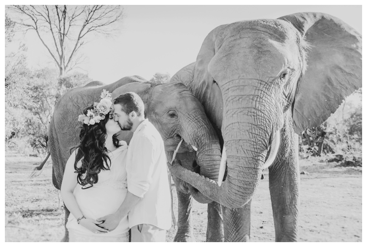 riankas-weddings-elephants-glen-afric-wedding-maternity00002
