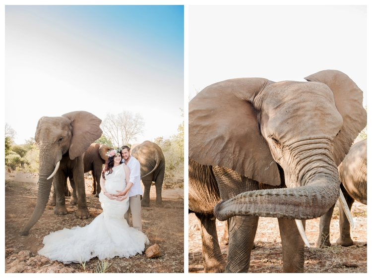 riankas-weddings-elephants-glen-afric-wedding-maternity00005