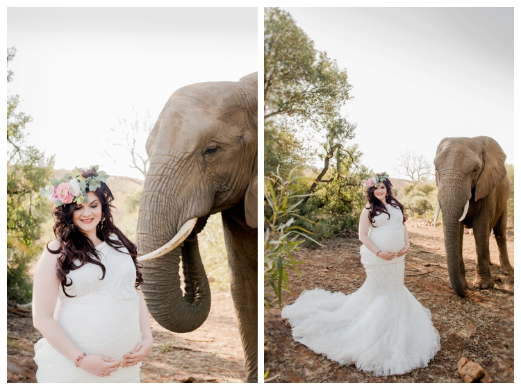 riankas-weddings-elephants-glen-afric-wedding-maternity00006