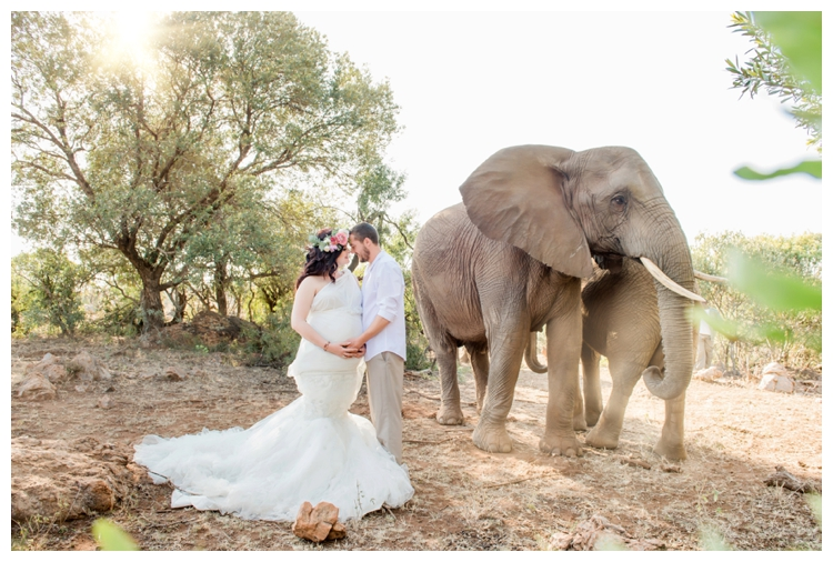 riankas-weddings-elephants-glen-afric-wedding-maternity00007