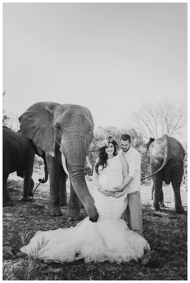 riankas-weddings-elephants-glen-afric-wedding-maternity00012