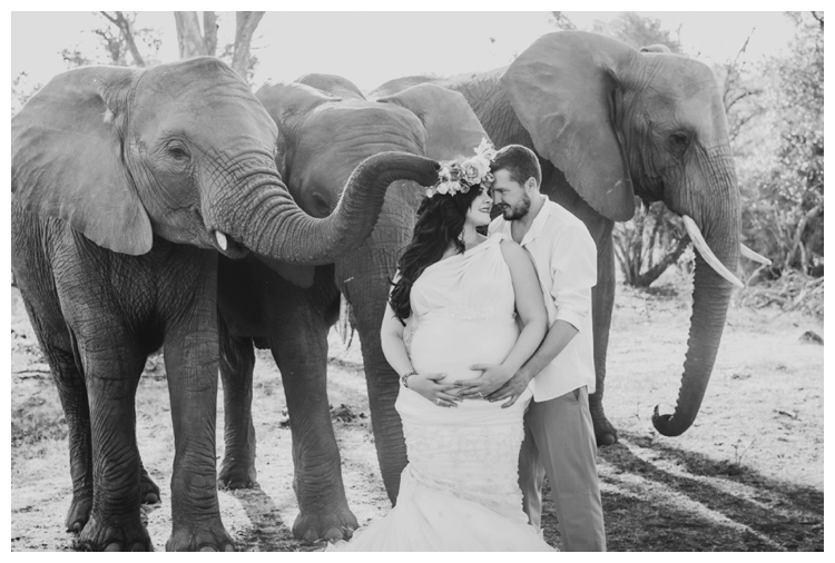 riankas-weddings-elephants-glen-afric-wedding-maternity00015