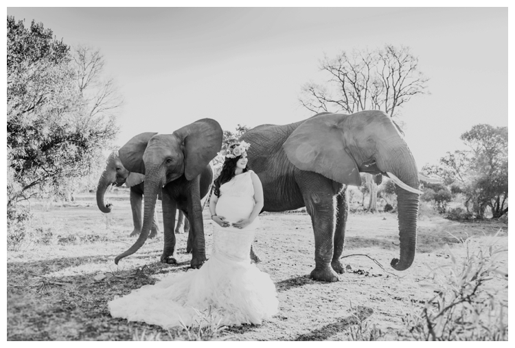 riankas-weddings-elephants-glen-afric-wedding-maternity00018