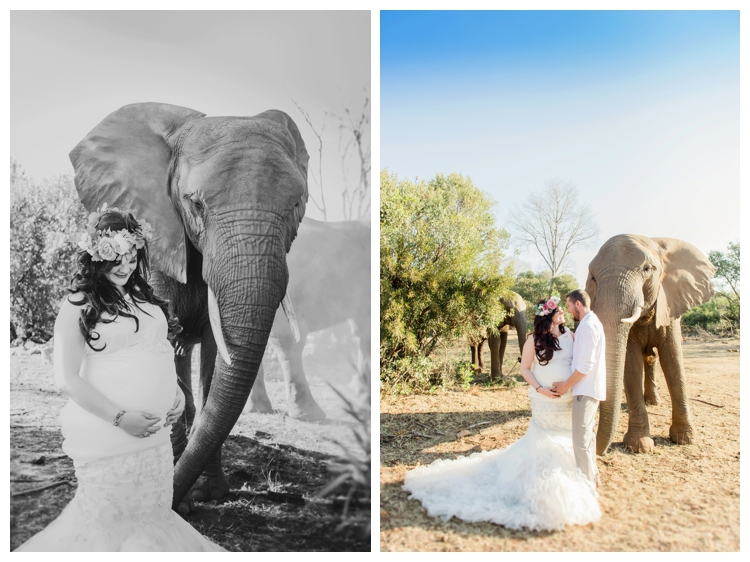 riankas-weddings-elephants-glen-afric-wedding-maternity00020