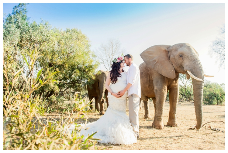 riankas-weddings-elephants-glen-afric-wedding-maternity00021