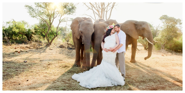 riankas-weddings-elephants-glen-afric-wedding-maternity00023