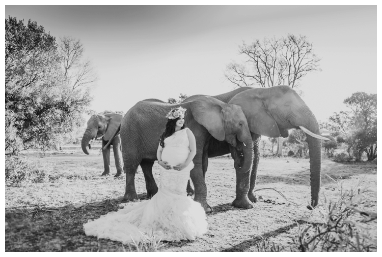 riankas-weddings-elephants-glen-afric-wedding-maternity00024