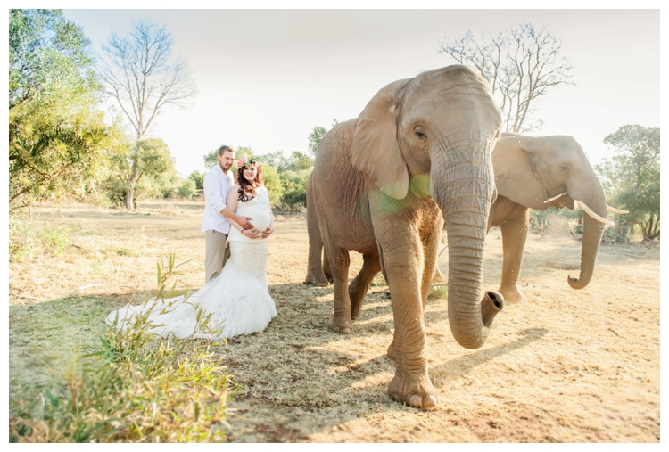 riankas-weddings-elephants-glen-afric-wedding-maternity00025